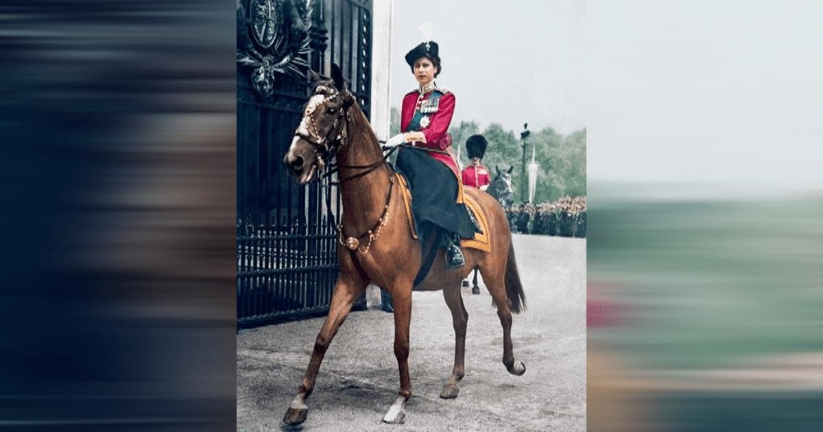 Winston, The One-Horse Propaganda Machine